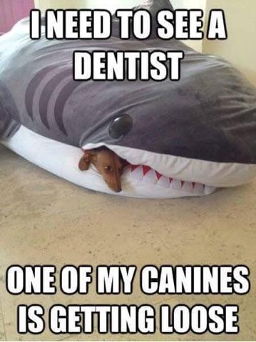 February Dental Month