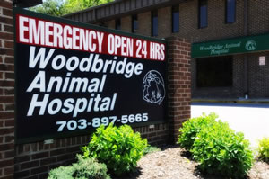 Old Bridge Veterinary Hospital - After Hours Emergency Animal Hospital