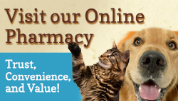 Online Pharmacy for OBVH through Vet's First Choice